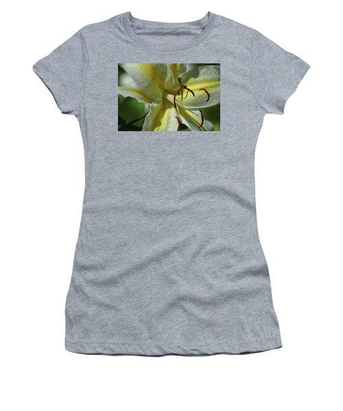 Asiatic Lily No 2 Women's T-Shirt