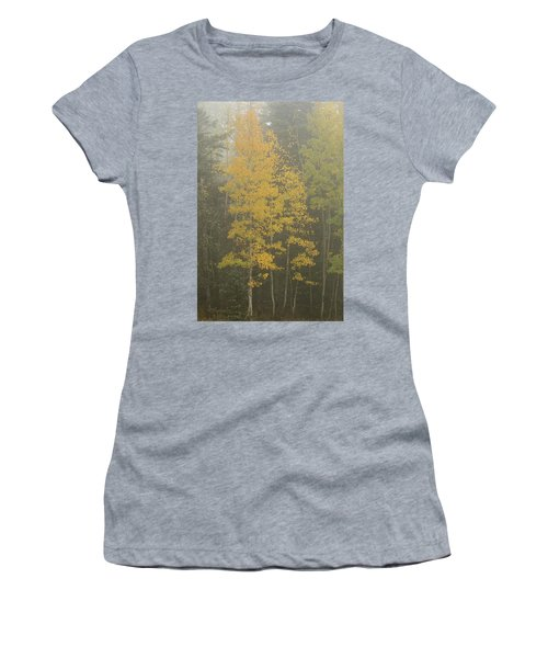 Aspen In The Fog Women's T-Shirt (Athletic Fit)