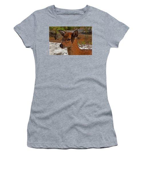 Assateague Island Sika Deer Fawn Women's T-Shirt