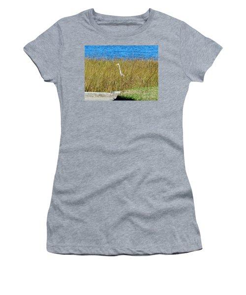 Audubon Park Sighting Women's T-Shirt