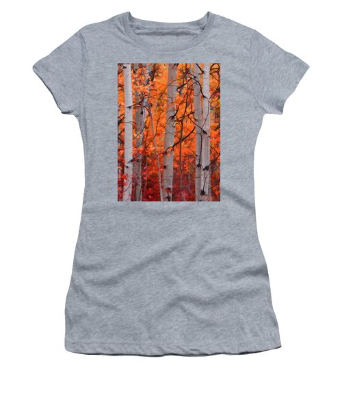 Autumn Splendor Women's T-Shirt (Junior Cut) by Don Schwartz