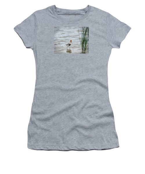 Avocet  Women's T-Shirt (Athletic Fit)