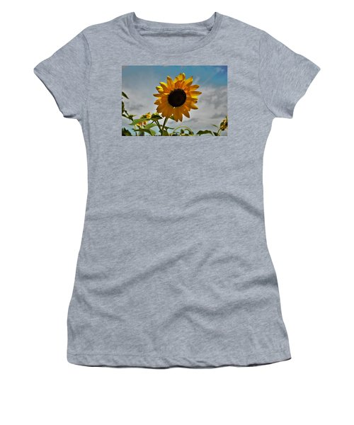 2001 - Awakening Sunflower Women's T-Shirt
