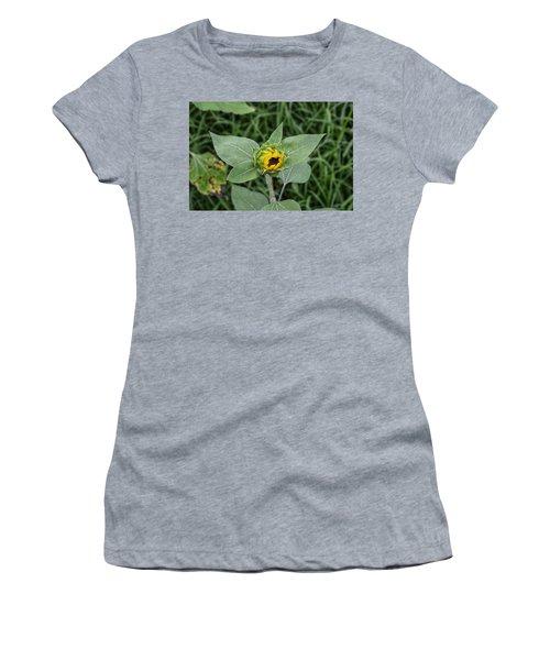 Baby Sunflower  Women's T-Shirt