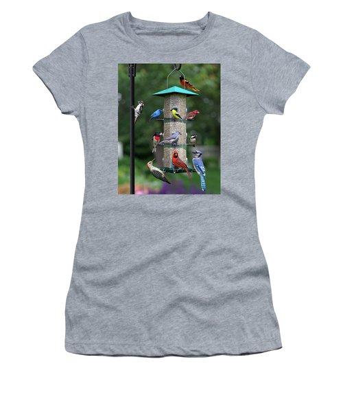 Backyard Bird Feeder Women's T-Shirt