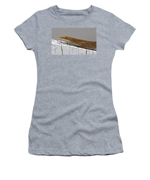 Backyard Visitor Women's T-Shirt