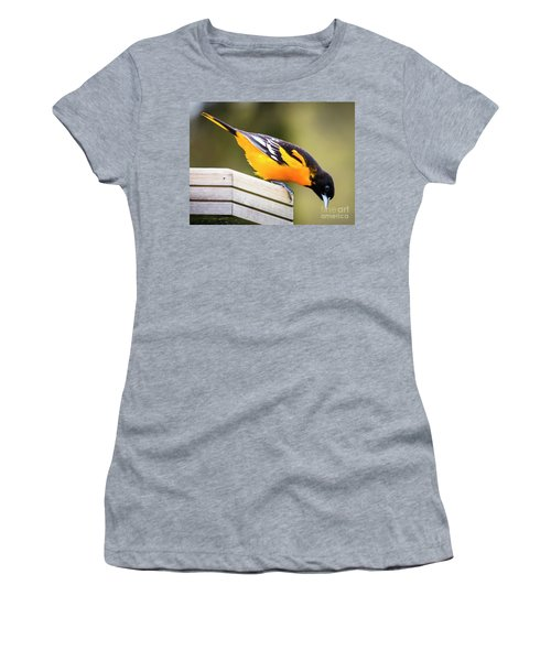 Baltimore Oriole About To Jump Women's T-Shirt
