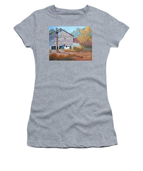 Barn Door Whimsy Women's T-Shirt (Junior Cut) by Joyce Hicks
