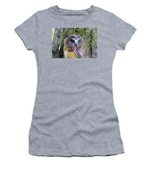 Beautiful Eyes Of A Saw-whet Owl Chick Women's T-Shirt