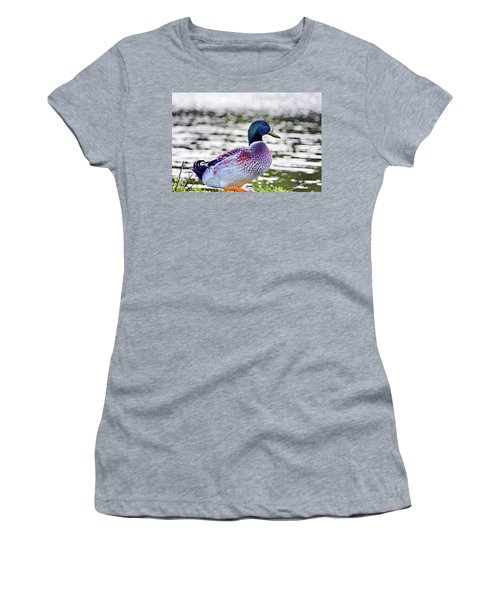Beautiful Vibrant Mallard Duck Women's T-Shirt
