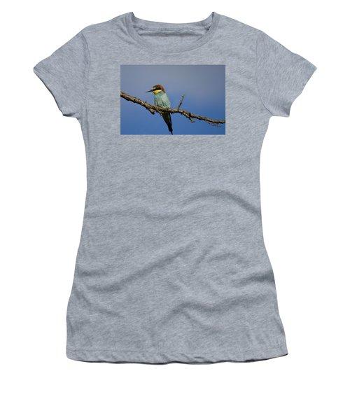 Bee Eater  Women's T-Shirt