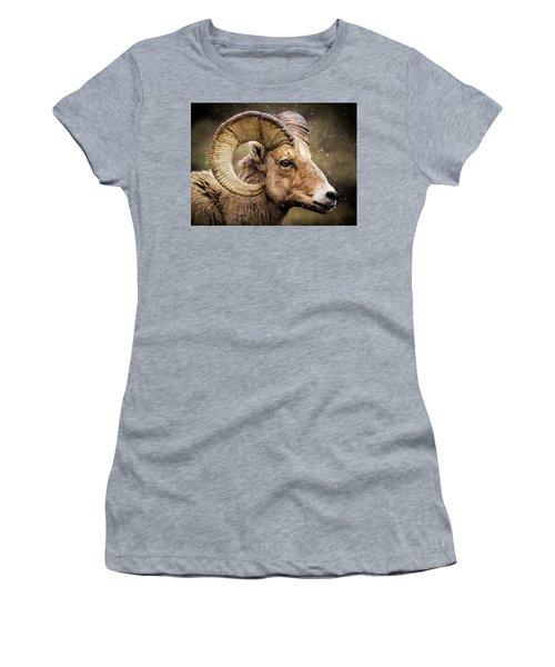 Bighorn Sheep In Winter Women's T-Shirt