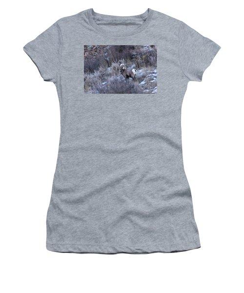 Bighorn8 Women's T-Shirt