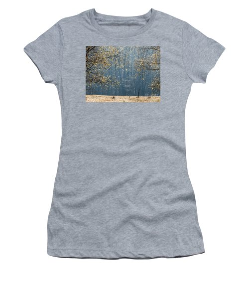 Birch Forest To The Morning Sun Women's T-Shirt