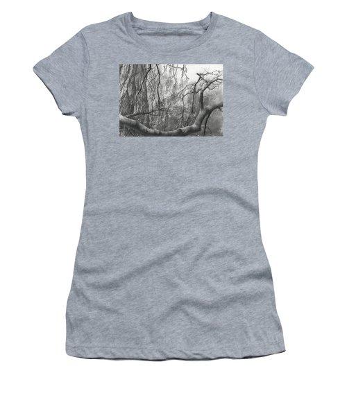 Birch Tree In Rain Women's T-Shirt