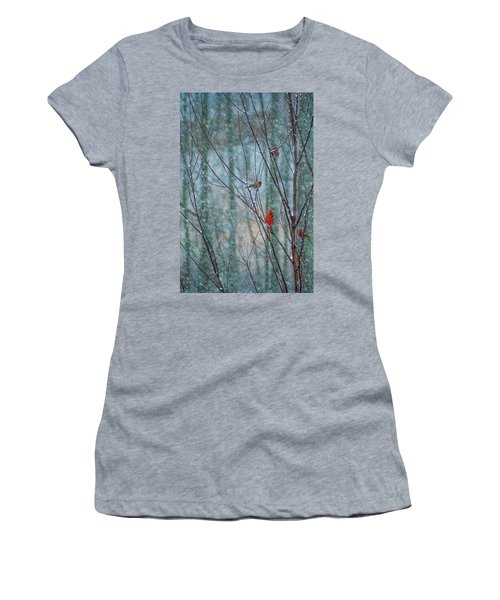 Birds On A Snowy Day Women's T-Shirt (Athletic Fit)
