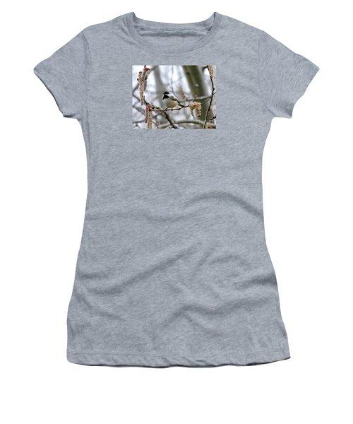 Black-capped Chickadee 20120321_39a Women's T-Shirt (Junior Cut) by Tina Hopkins