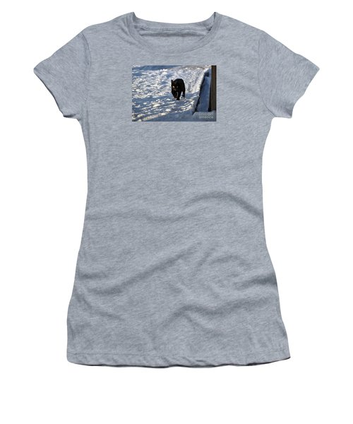 Women's T-Shirt (Junior Cut) featuring the photograph Black Cat In Snow by Mark McReynolds