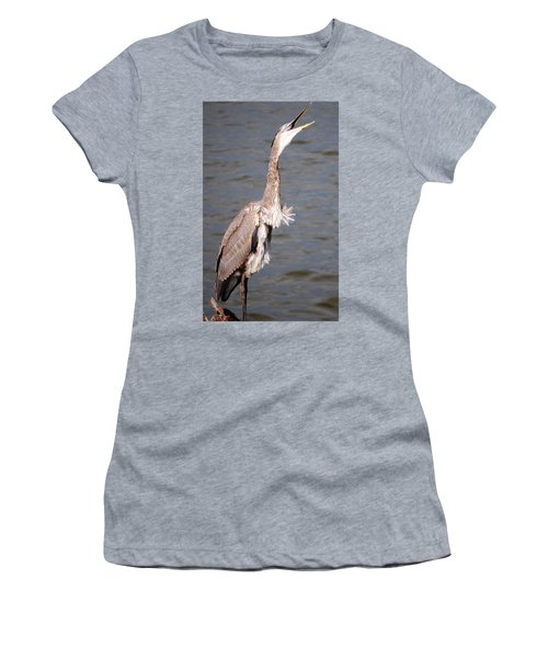 Blue Heron Calling Women's T-Shirt (Junior Cut) by Sumoflam Photography