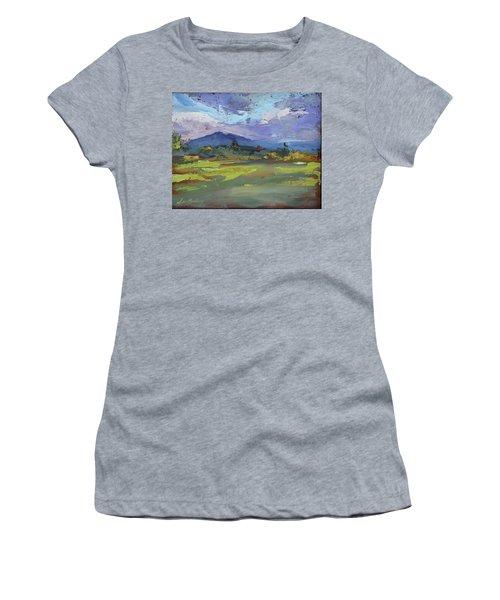 Blue Ridge Parkway Lookout Women's T-Shirt (Athletic Fit)