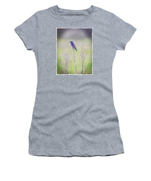 Bluebird On Hemlock Women's T-Shirt (Junior Cut) by Mitch Shindelbower
