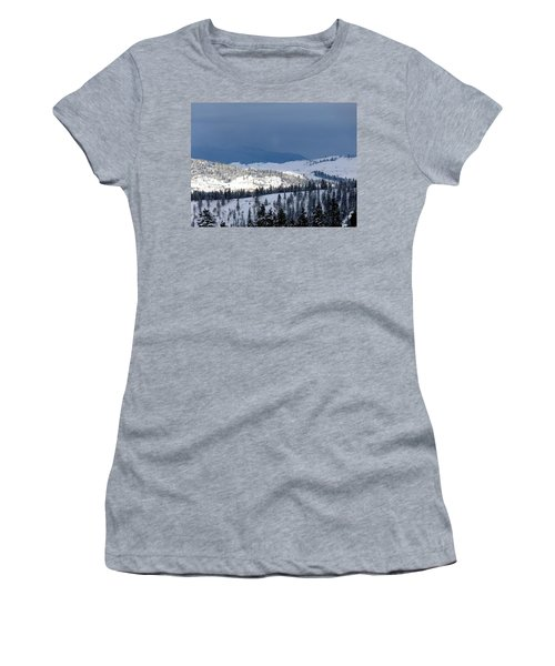 Women's T-Shirt (Junior Cut) featuring the photograph Bright Patch Of Sunshine by Will Borden