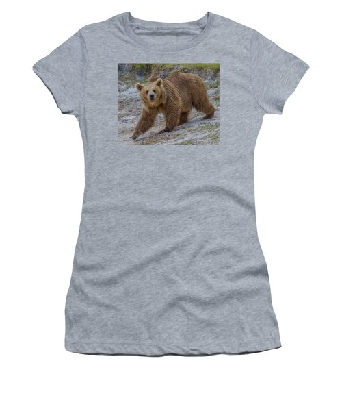 Brown Bear 3 Women's T-Shirt (Athletic Fit)
