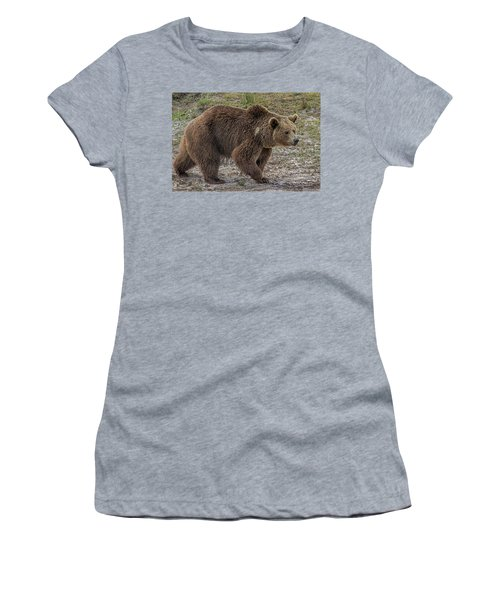 Brown Bear 6 Women's T-Shirt (Athletic Fit)
