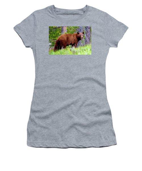 Brown Bear Women's T-Shirt