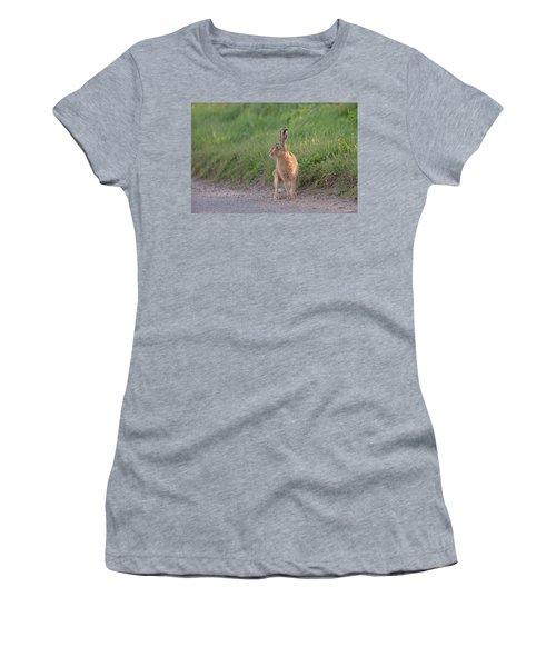 Brown Hare Listening Women's T-Shirt