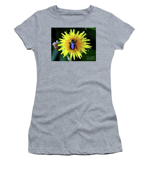 Women's T-Shirt featuring the photograph Bullseye Bumblebee Dandelion by Rockin Docks Deluxephotos