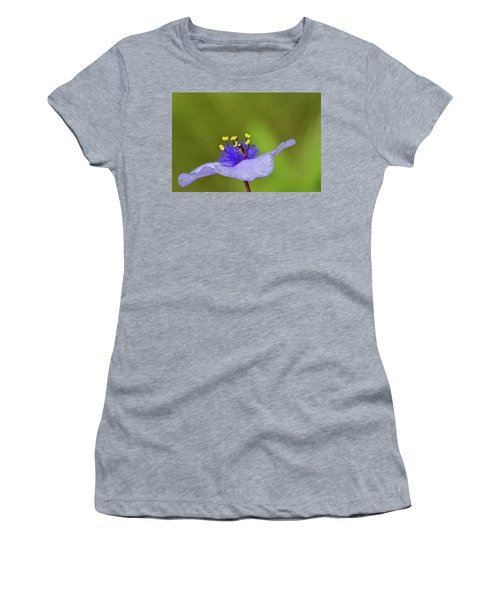 Busy Visitor - Syrphid Fly On Spiderwort Women's T-Shirt (Junior Cut) by Jane Eleanor Nicholas