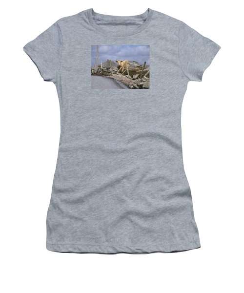 Women's T-Shirt (Junior Cut) featuring the photograph Butterscotch by Suzanne Oesterling