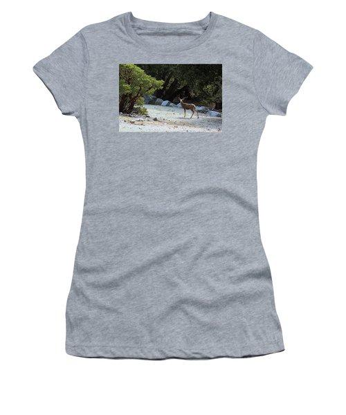California Mule Deer Women's T-Shirt (Junior Cut) by Viktor Savchenko