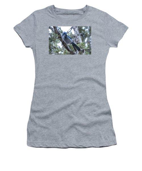 Canyon Jay Women's T-Shirt
