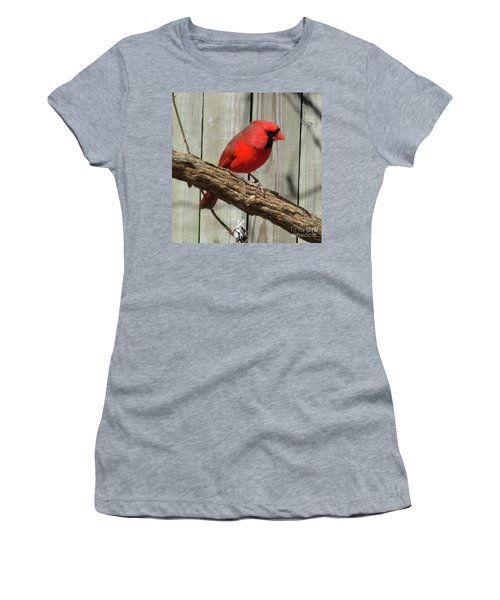 Cardinal Waiting For Spring Women's T-Shirt