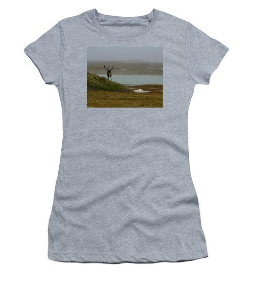 Caribou Fog Women's T-Shirt (Junior Cut) by Anthony Jones