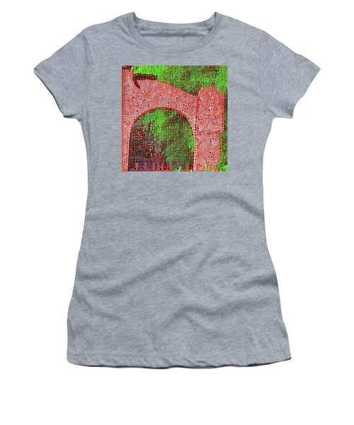 Cat On Enfield Women's T-Shirt