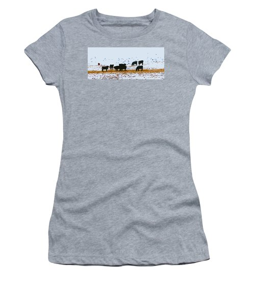 Cattle And Birds Women's T-Shirt