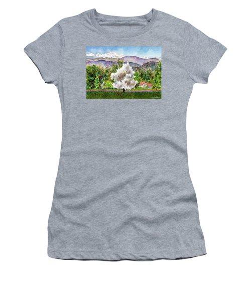 Celeste's Farm Women's T-Shirt (Athletic Fit)