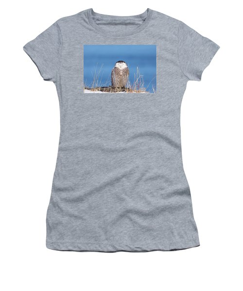 Centered Snowy Owl Women's T-Shirt