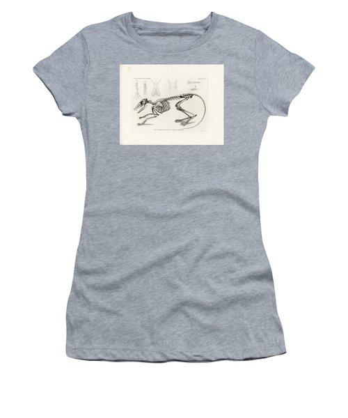 Checkered Elephant Shrew Skeleton Women's T-Shirt
