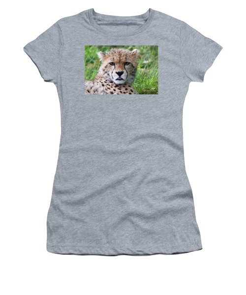 Women's T-Shirt (Junior Cut) featuring the photograph Cheetah by MGL Meiklejohn Graphics Licensing