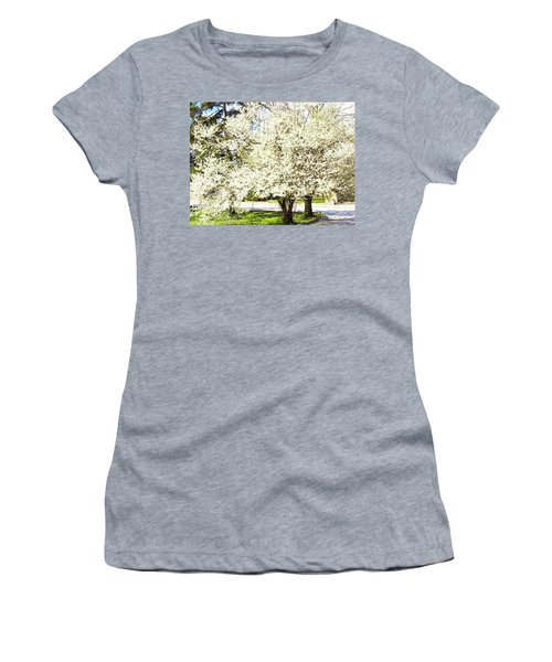 Cherry Trees In Blossom Women's T-Shirt (Athletic Fit)