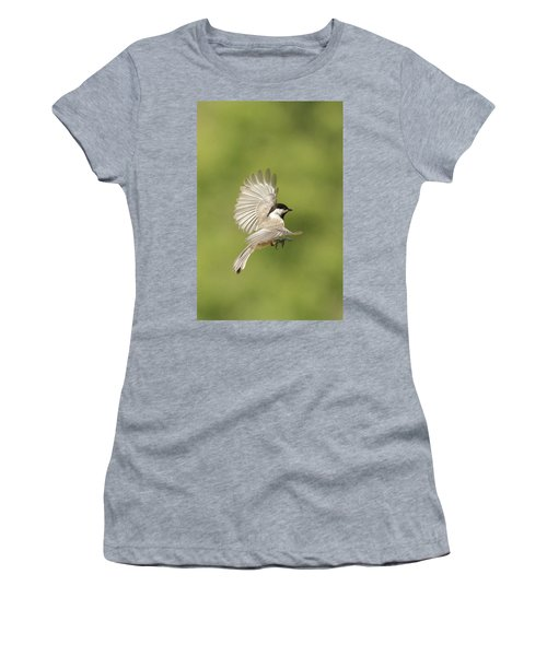 Chickadee In Flight Women's T-Shirt (Junior Cut) by Alan Lenk