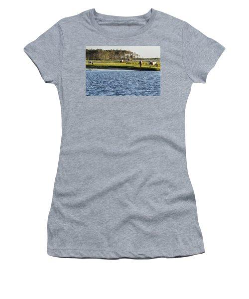 Chincoteague Ponies On Assateague Island Women's T-Shirt