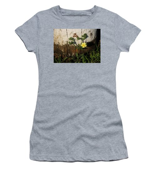 Cinquefoil Wildflower Women's T-Shirt