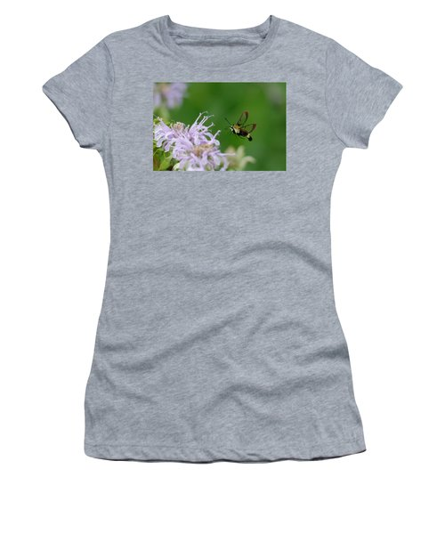 Clearwing Moth Women's T-Shirt