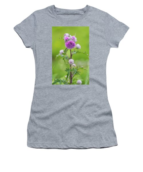 Cobweb Thistle Women's T-Shirt