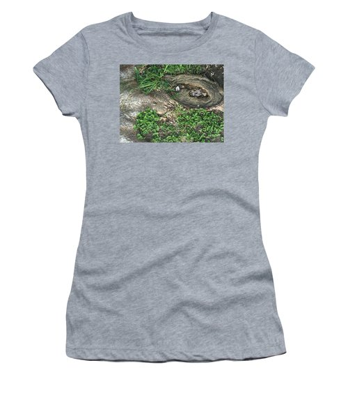 Composition In Trees Women's T-Shirt (Athletic Fit)